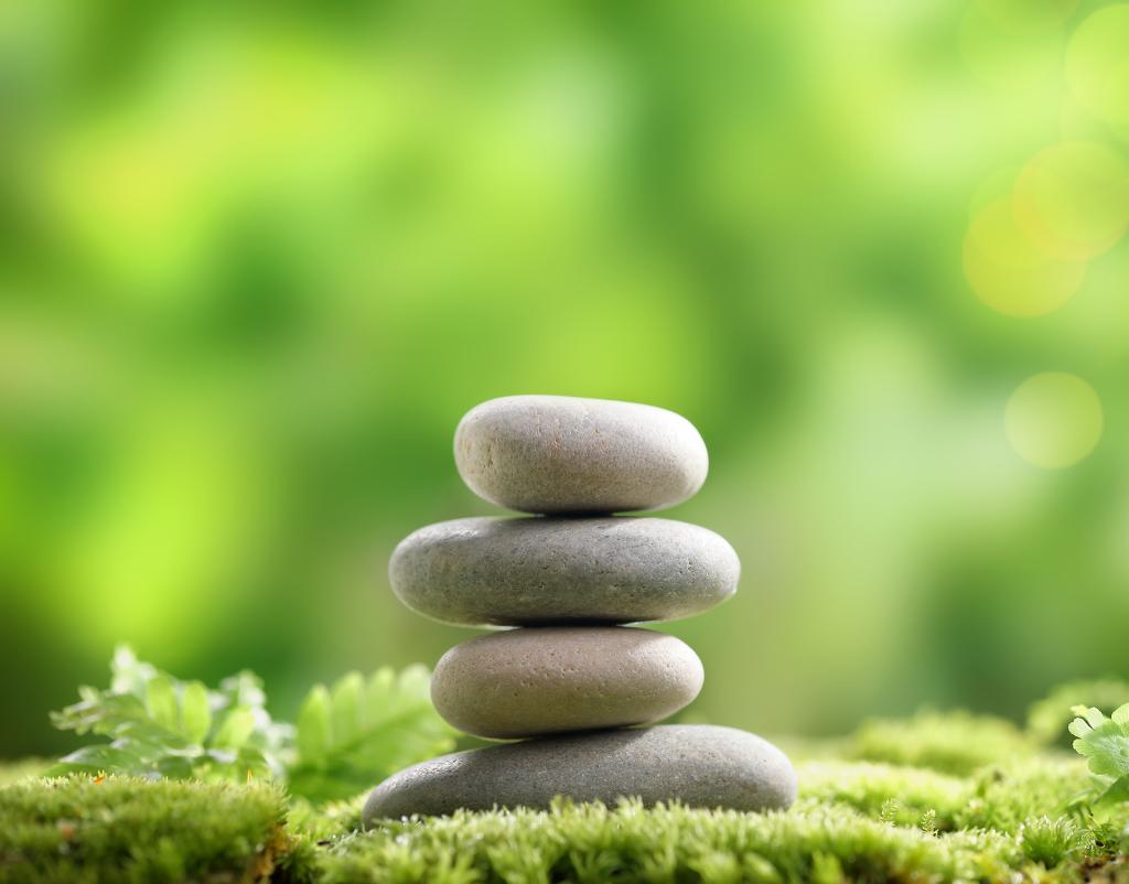 Programme de Réduction du Stress basé sur la Pleine Conscience